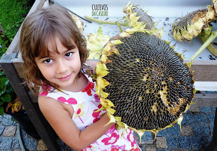 jardinagem com crianças
