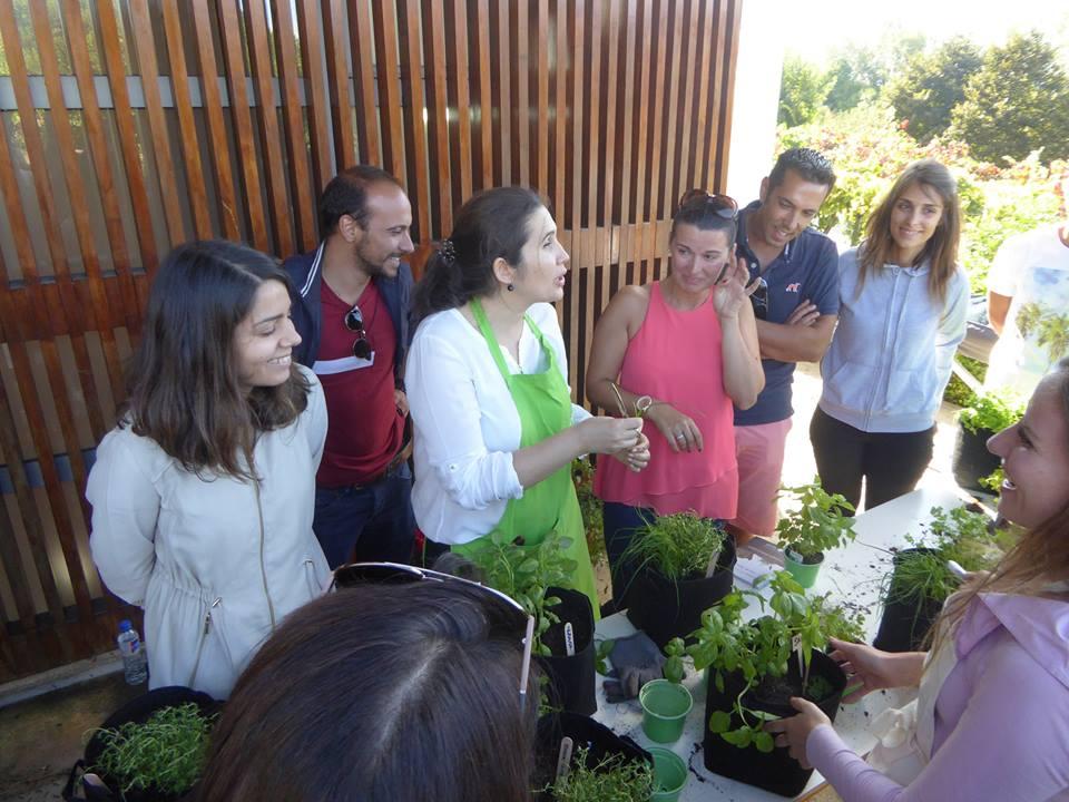 workshops cultivos da caseiro jardim aromático