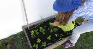 8 beneficios da jardinagem com crianças