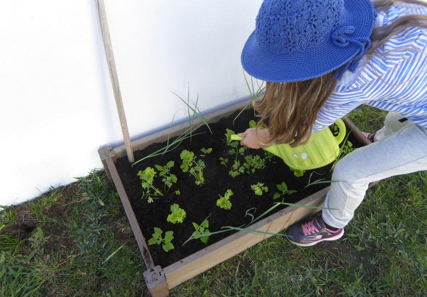 Jardinagem com crianças 8 benefícios