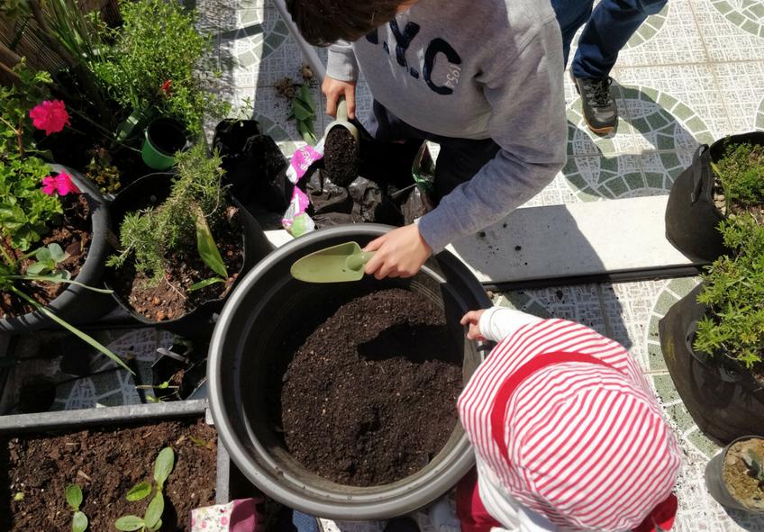plantar-uma-árvore-com-crianças
