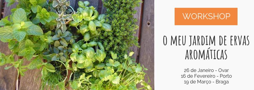 workshop-jardim-de-ervas-aromaticas