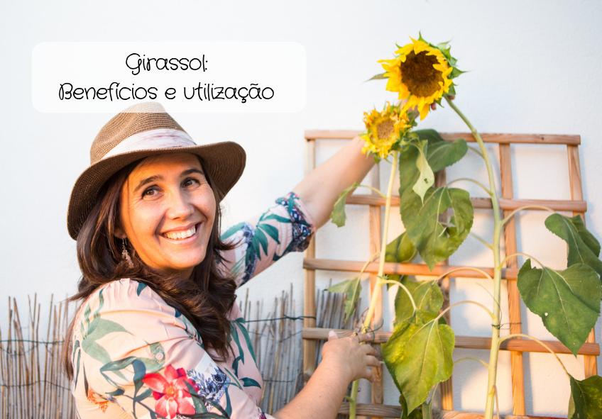 Girassol: Benefícios e utilização