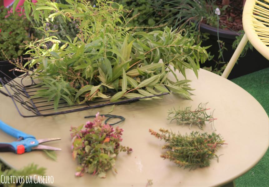 secar ervas aromáticas