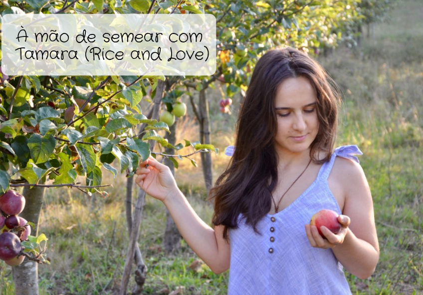 Rice and Love - receitas naturais