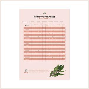 benefícios medicinais das ervas aromáticas