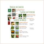 Calendário anual de cultivos