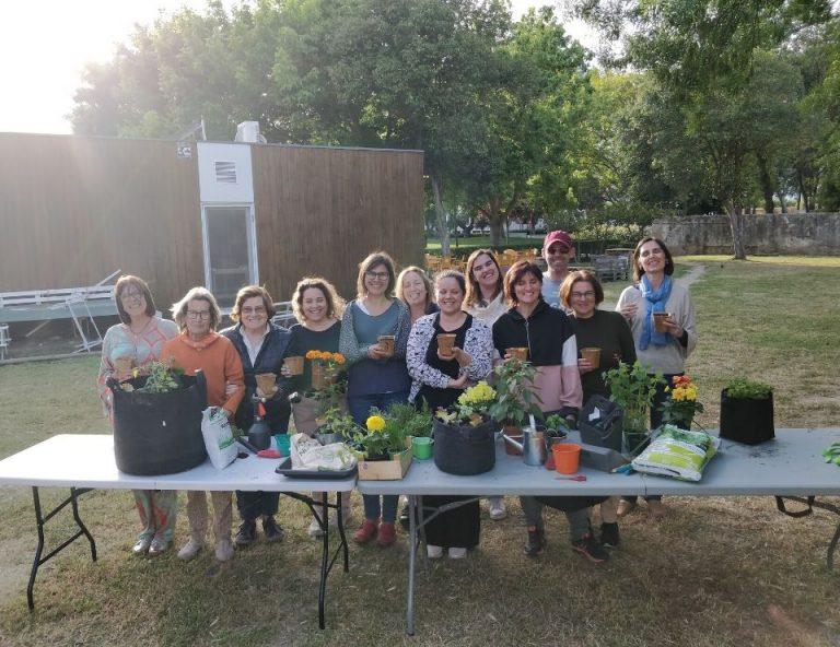 workshops cultivos da caseiro horta na varanda