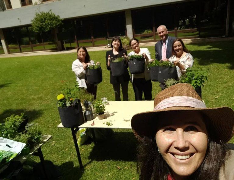workshops cultivos da caseiro para atividades de team building em empresas