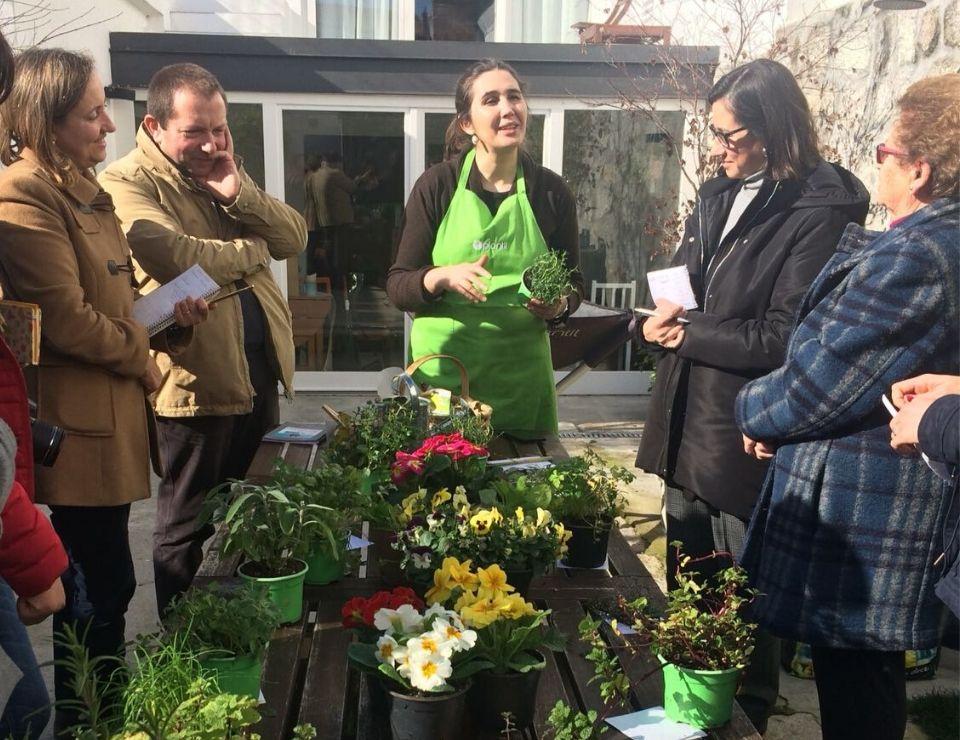 workshops cultivos da caseiro ervas aromáticas no porto