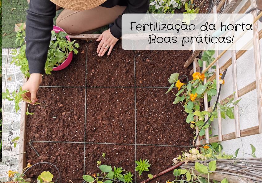 fertilização blog