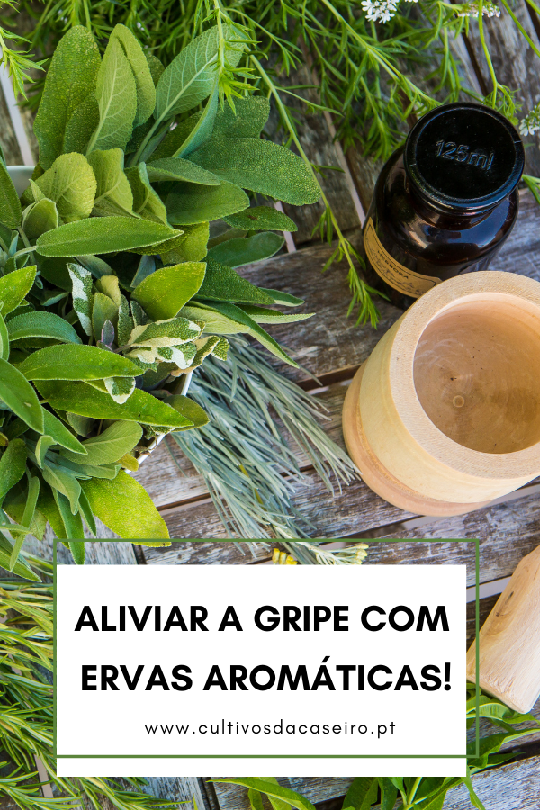 aliviar a gripe com ervas aromaticas