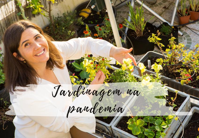 jardinagem na pandemia (1)