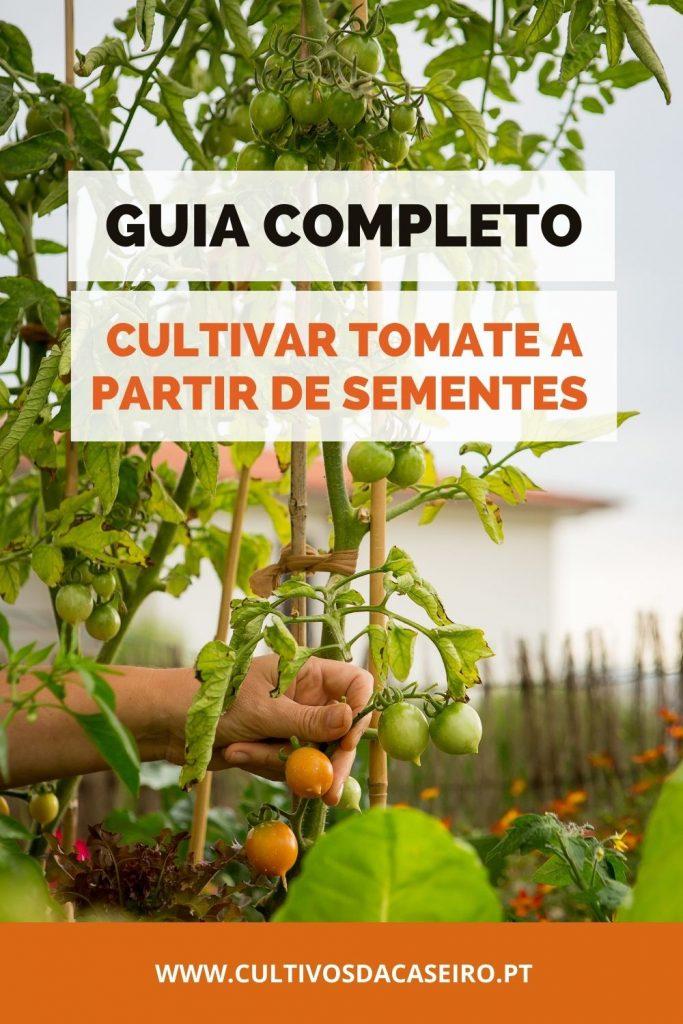 Guia-para-cultivar-tomate-a-partir-de-sementes